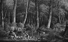Kolonisten als Zugtiere Wie mit so vielen ihrer geraubten Kolonien, wußten die Engländer auch mit dem von Kapitän Cook entdeckten Australien lange nichts Rechtes anzufangen und verwandten es als Sträflingskolonie. Die Deportierten wurden dann, wie unser Bild nach einer alten Lithographie zeigt, von den Offizieren und Beamten als Zugtiere verwandt.