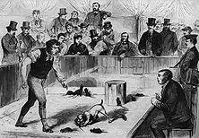 """Das Rattenbeißen – Die Rohheit des englischen Volkscharakters erweist sich an dem sadistisch-grausamen Spiel mit Tieren, wie es in Gestalt der Fuchsjagd noch heute beliebt ist. Lange Zeit war das """"Rattenbeißen"""" ein verbreitetes Vergnügen: der Hund, der in der kürzesten Zeit die meisten Ratten totbeißt, erhält einen Preis. - Holzschnitt aus der französische Zeitschrift """"Le Monde Illusirg"""" (1870)."""
